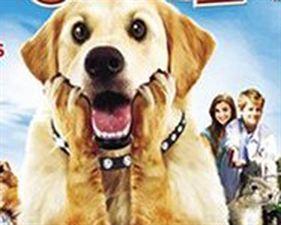 Diamond Dog : chien milliardaire - bande annonce - VO - (2008)