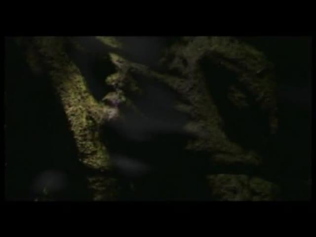 Le Pacte des loups - teaser 4 - (2001)