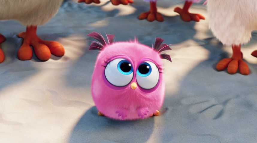 Angry Birds - Le Film - Bande annonce 9 - VF - (2016)