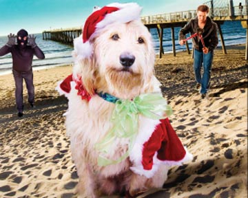 Christmas Dog - bande annonce - VO - (2012)