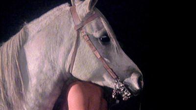 Equus - bande annonce 2 - VOST - (1978)