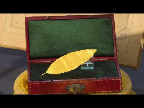 Gold bay leaf from Napoleon's crown to be sold at auction
