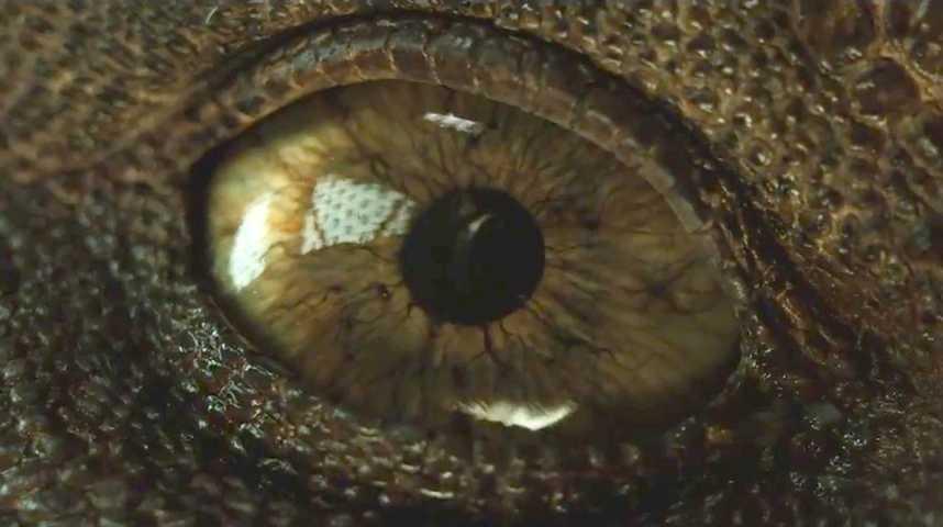 Jurassic World: Fallen Kingdom - Teaser 27 - VF - (2018)