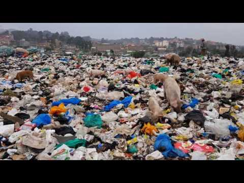 Researchers engineer plastic-eating enzyme