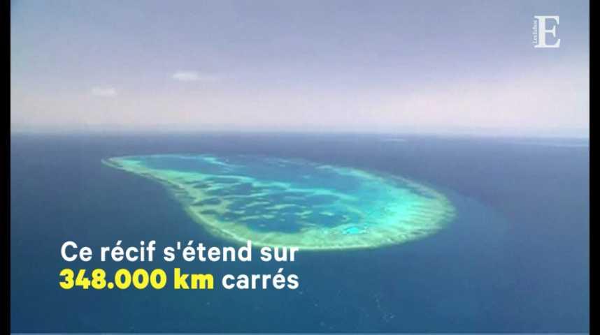 Illustration pour la vidéo Plus de 300 millions d'euros pour sauver la Grande barrière de corail