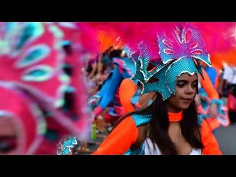 Revellers take part in Costa Rica carnival parade