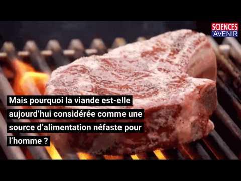 Moins de viande, moins de décès et de gaz à effet de serre