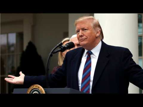 Trump To Visit Border To Get Support For His Wall