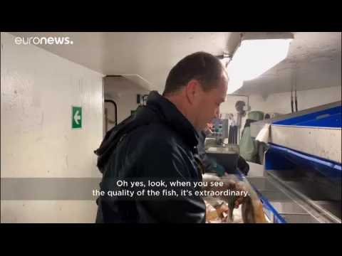 Prospect of no-deal Brexit sparks concern among French fishermen