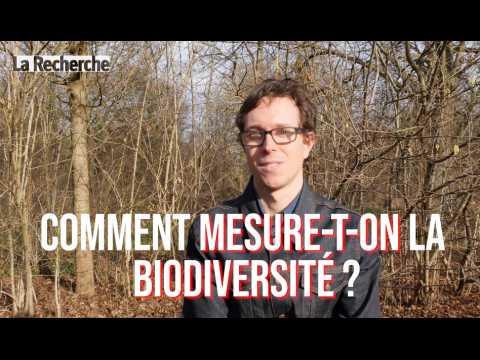 La biodiversité, comment la mesurer ?