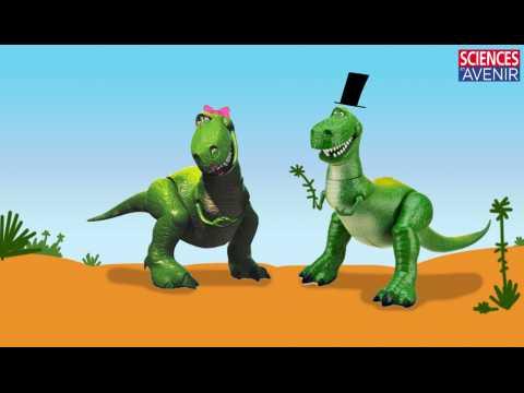 La vie sexuelle du T. rex