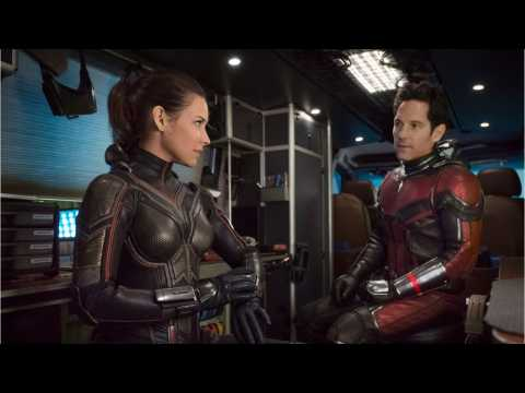 Ant-Man and the Wasp Stings Box Office Competition