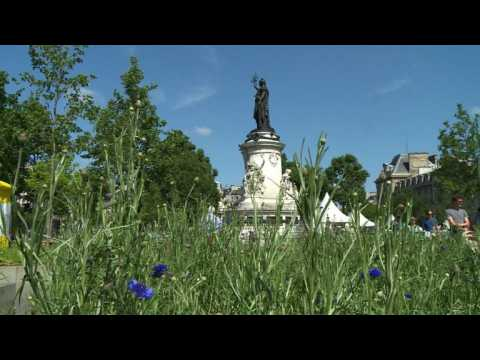 Paris' Place de la Republique goes green to promote biodiversity