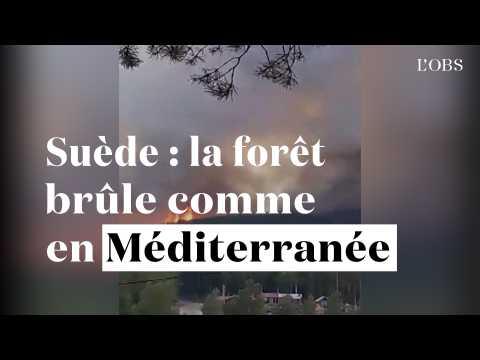 Suède : la forêt brûle comme en Méditerrannée