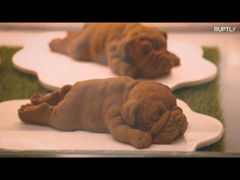 Adorable chocolate puppy mousse that's too cute to eat