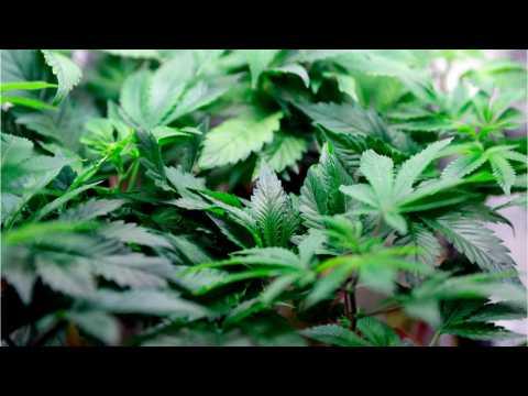 Marijuana-Derived Drug Treats Seizures