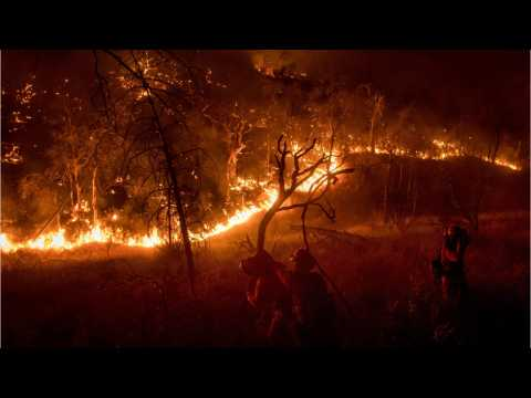 Mendocino Becomes The Largest Out-Of-Control Wildfire Currently In California
