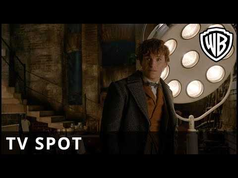 Fantastic Beasts: The Crimes of Grindelwald - 'Chosen' TV Spot - Warner Bros. UK