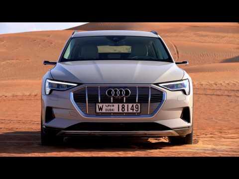 Audi e-tron Exterior Design in Siam Beige