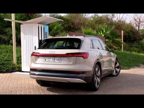 Audi e-tron in Siam Beige Charging demo