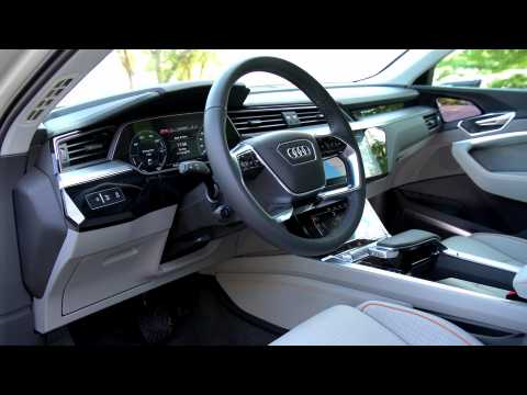 Audi e-tron Interior Design in Siam Beige
