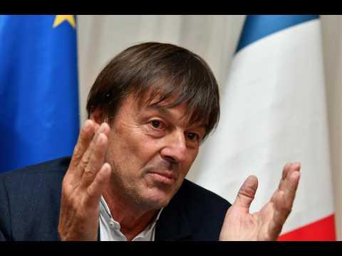 """Abattage de loups : Nicolas Hulot s'explique sur sa décision """"pas forcément agréable à prendre"""""""
