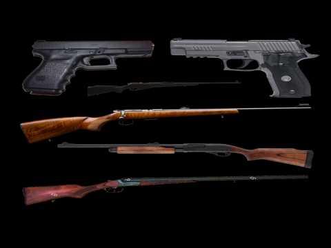 Champs-Elysées : voici toutes les armes pour lesquelles Adam D., fiché S, avait obtenu un permis de port d'armes