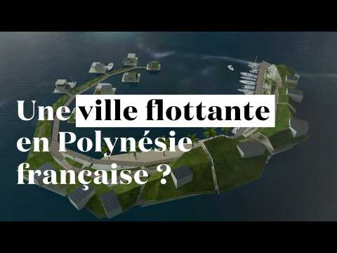 Bientôt une île artificielle et libertarienne en Polynésie française ?