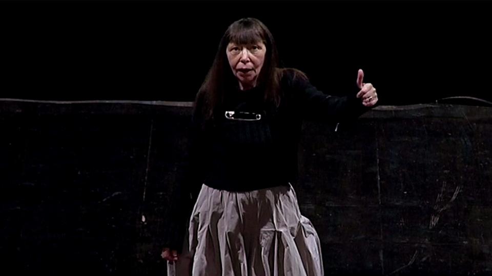 Brigitte Fontaine Reflets et Crudité - bande annonce - (2013)