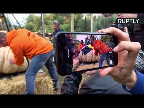 European Farmers Bring in Autumn with Giant Pumpkin Contest