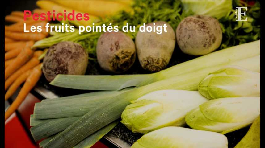 Illustration pour la vidéo Pesticides : les fruits pointés du doigt