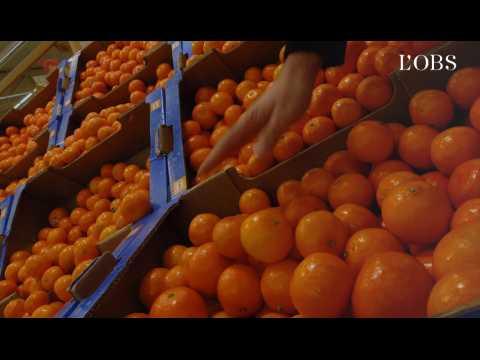 Clémentines, raisins, cerises : 3/4 de nos fruits contiennent des résidus de pesticides
