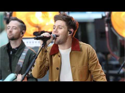 Hailee Steinfeld, Niall Horan Dating Or No???