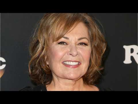 'Roseanne' Prompts Questions About Red/Blue TV divide