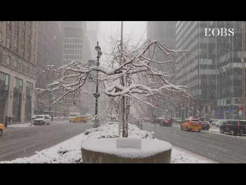New York débute le printemps... sous la neige