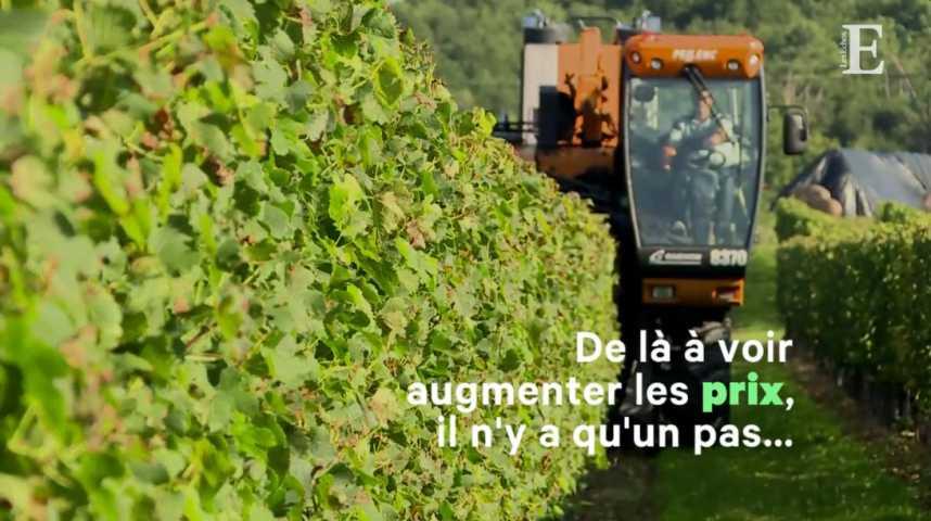 Illustration pour la vidéo Vin : les Bordelais vont puiser dans leurs stocks pour exporter