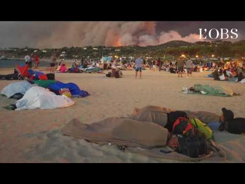 Incendies dans le Var : évacuation massive à Bormes-les-Mimosas