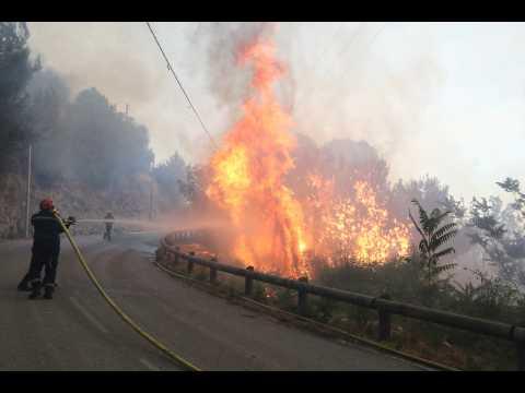 Alpes-Maritimes : un incendie ravage les alentours de Nice