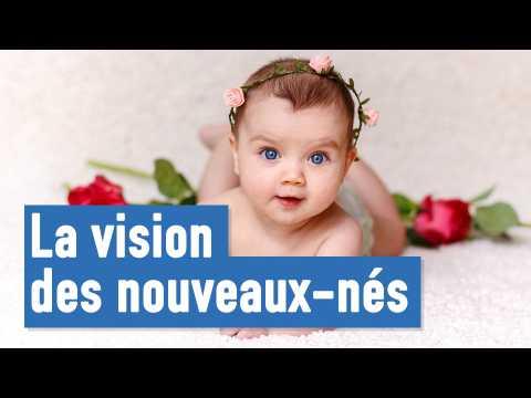 Question de la semaine : comment voient les bébés ?