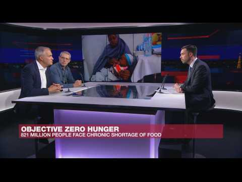 Objective Zero Hunger: How to reduce chronic food shortages?