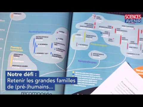 Défi : apprendre les familles de pré-humains en 5 mn !