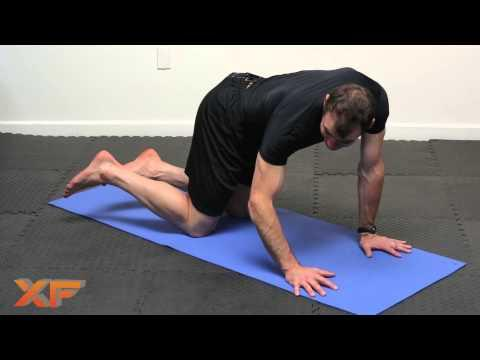 Yoga Movements for Lower Back Pain by XF