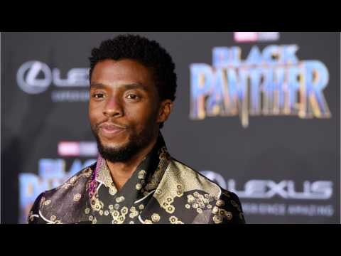 Black Panther Tops Poll For Audiences Pick For Best Picture Oscar