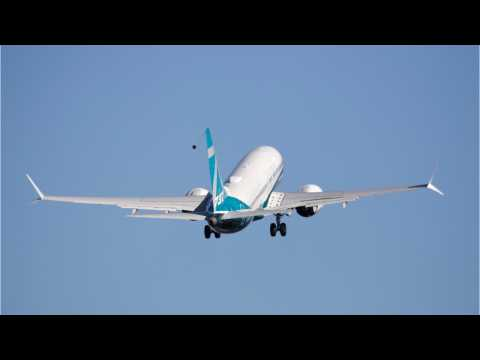 Ukraine Suspends Two Boeing 737 Models Following Deadly Ethiopia Crash