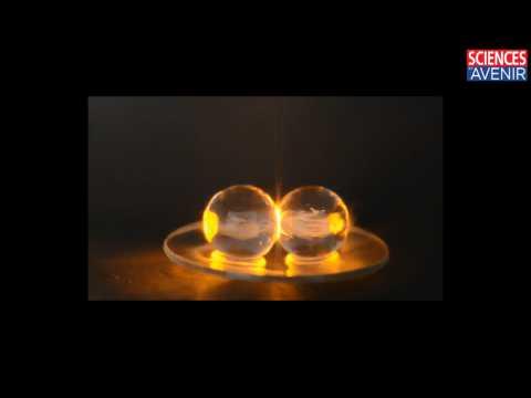 Comment le plasma vient aux grains de raisin dans un four à micro-ondes