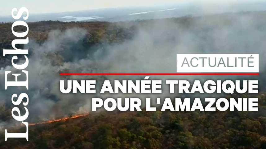 Illustration pour la vidéo L'Amazonie ravagée par de violents incendies