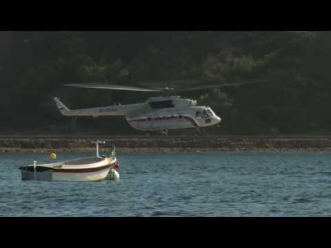 Vladimir Putin's helicopter arrival for Macron bilateral