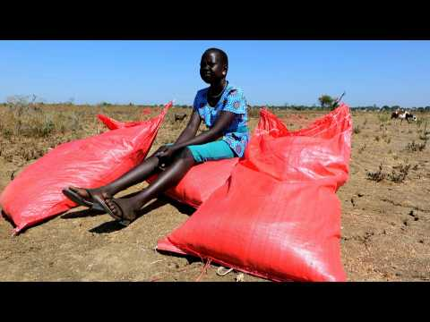 """South Sudan: UN's World Food Programme airdrops supplies in bid to """"stop famine in its tracks"""""""