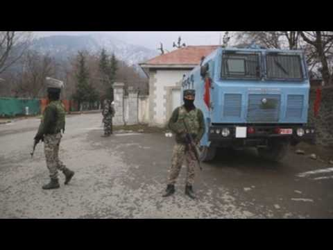 Group of foreign diplomats visit Kashmir under heavy security