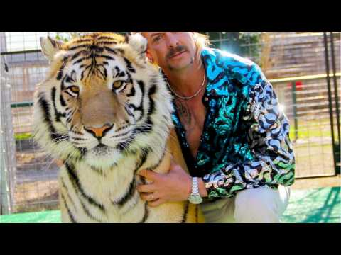 The Tiger King Obsession Continues With BBC's New Feature on Joe Exotic